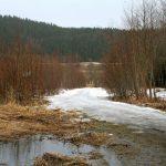Parkeringsplassen ved Dragvoll