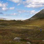 Evige flytstier nedover Skrikdalen