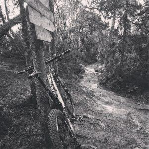 Sykkel og skilt