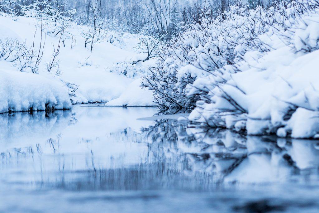Underkjølt bekk i Langlidalen