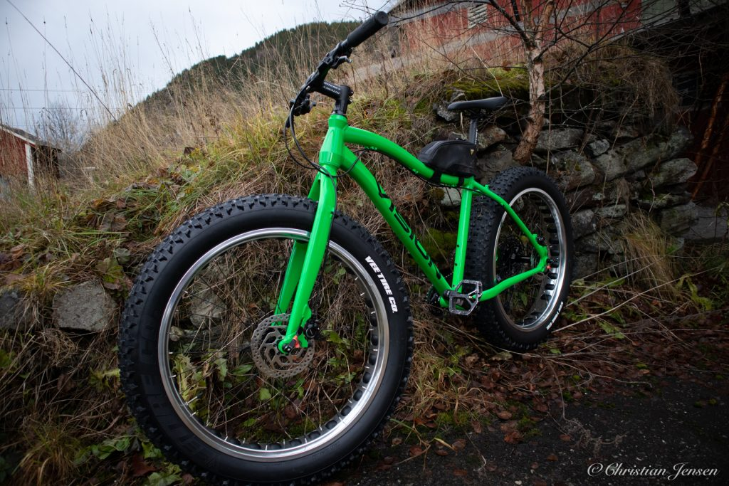 Giant Vision 19 Fatbike 1